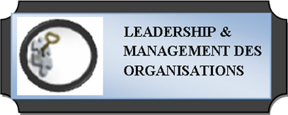 Leadership & Management des organisations-LMO